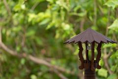 森林灯 免版税库存图片