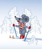 森林灰色鼠标天空 图库摄影