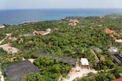 森林热带尤加坦 免版税库存照片