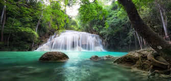森林热带瀑布 库存图片