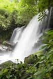 森林热带瀑布 免版税图库摄影