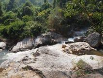 森林热带瀑布 免版税库存图片