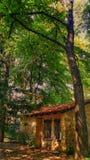 森林的一点房子! 免版税库存图片