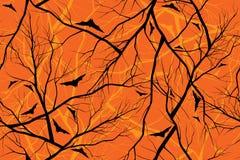 森林的万圣夜橙色背景难看的东西图象 免版税库存图片