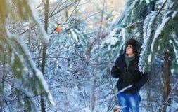 森林的人 库存照片