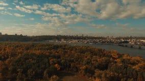 从森林的全景城市的 股票录像