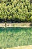 森林的反射麋通行证的 免版税库存图片