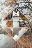 森林的图象秋天和神圣的几何标志 免版税图库摄影