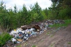 森林的污染由家庭垃圾的 堆垃圾在森林里污染的全球性问题 免版税库存照片