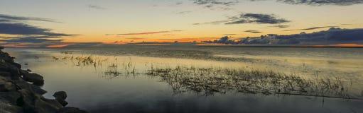 森林的湖 图库摄影