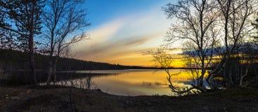 森林的湖 库存图片