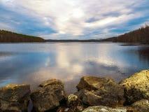 森林的湖 免版税库存照片