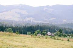 森林的看法喀尔巴阡山脉的 倾斜山和美丽的景色 免版税库存图片