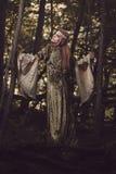 森林的美丽的公主 库存照片