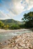 森林的背景的山河 免版税图库摄影