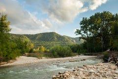 森林的背景的山河 库存图片