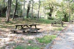 森林的野餐区 免版税库存图片