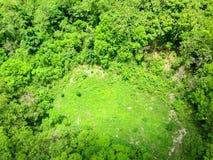 森林的鸟瞰图 免版税库存照片