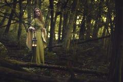 森林的绿色夫人 免版税库存照片