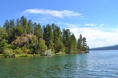 森林盖了在湖麦克唐纳,蒙大拿的半岛 免版税库存图片