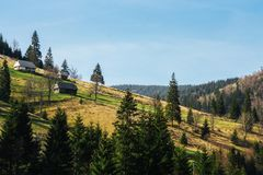 森林盖的绿色山小山风景用小屋 免版税库存图片