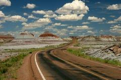 森林石化路绕 免版税图库摄影