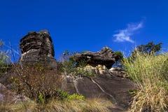 森林石头和蓝天 免版税库存照片