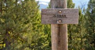 森林符号线索 库存照片