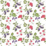森林莓果的样式 免版税库存照片