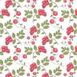 森林莓果的样式 库存照片