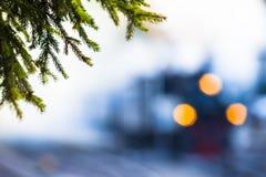 森林蒸汽火车 图库摄影