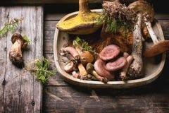 森林蘑菇的混合 免版税库存照片