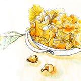 森林蘑菇黄蘑菇 免版税库存照片