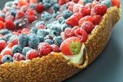 森林蛋糕的混杂的果子 免版税库存图片