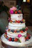 森林蛋糕 库存图片