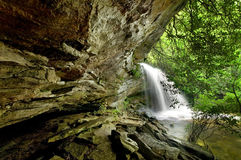 森林豪华的雨瀑布 库存照片
