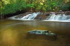 森林豪华的雨瀑布 库存图片