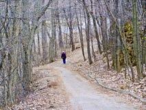 森林走的妇女 免版税图库摄影