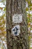 森林足迹火焰被钉牢对树 免版税库存图片