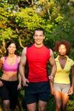 森林跑步的体育运动 免版税库存照片