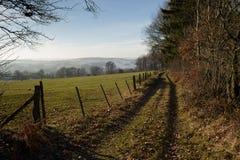 森林边界在冬天 免版税库存图片