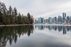 森林遇见摩天大楼,史丹利公园,温哥华,加拿大 图库摄影