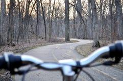 森林道路/路看法从后面自行车把柄酒吧 库存图片