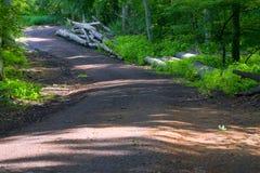 森林酸值mak路 库存图片