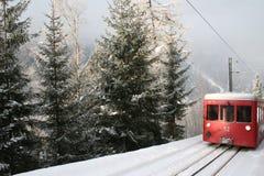 森林铁路运输旅行 免版税库存照片