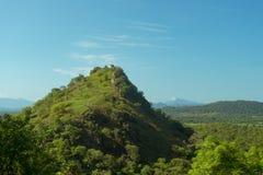森林隐蔽的山 斯里兰卡的看法 免版税库存图片
