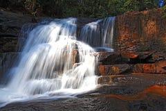 森林雨tadtone热带瀑布 免版税库存图片
