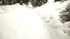 森林雪风暴冬天 股票视频
