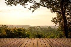 森林风景和木头地板 免版税库存图片