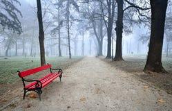 森林风景在秋天 免版税图库摄影